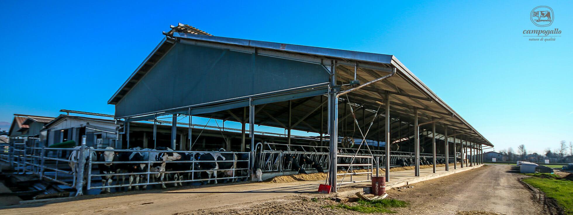 Azienda Agricola Campogallo Stalla