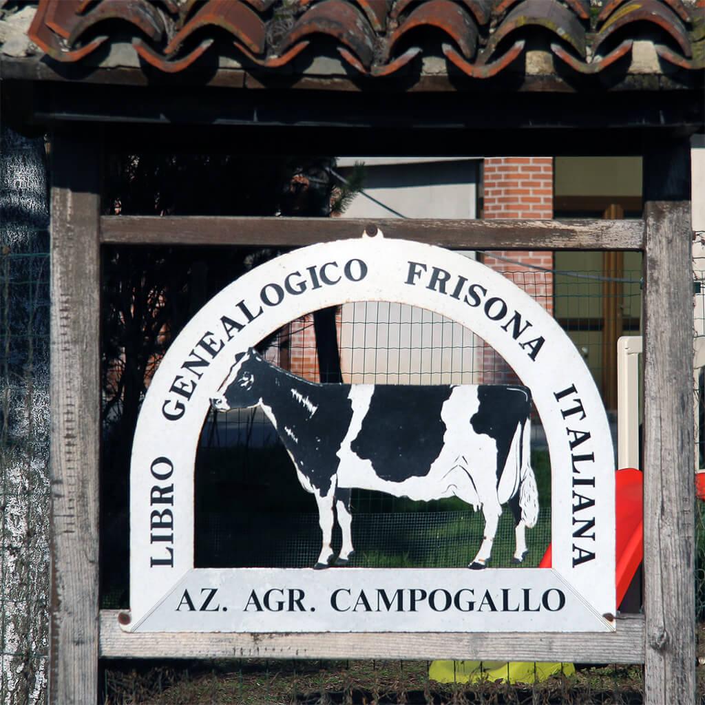 Azienda Agricola Campogallo Tabella ingresso